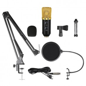 Recording microphone for...
